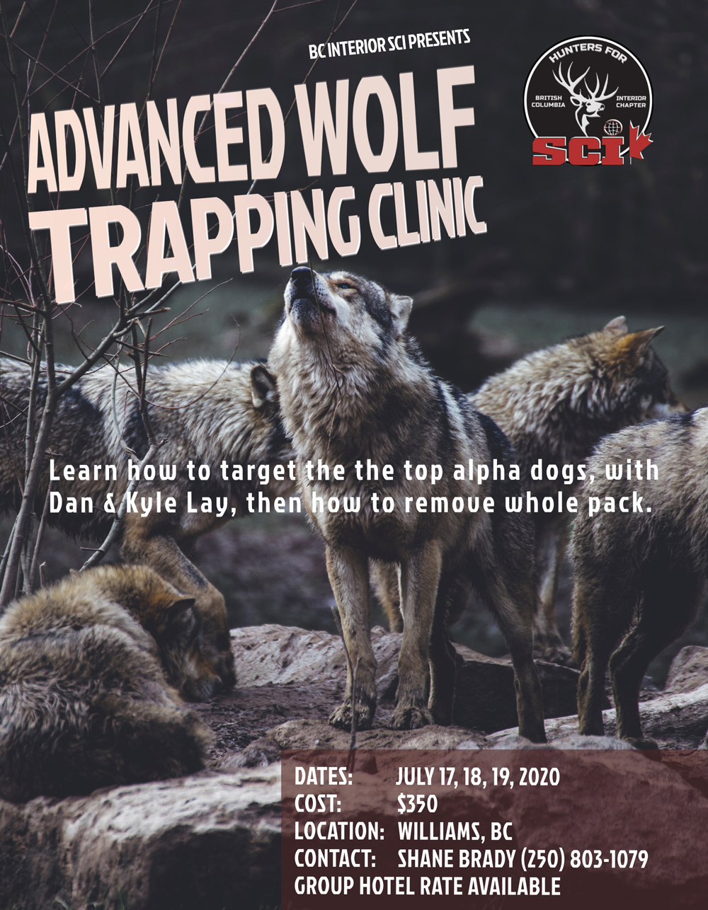 WOLF CLINIC WILLIAMS LAKE2